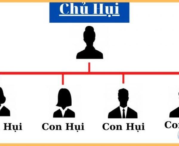 Choi hui nhu the nao